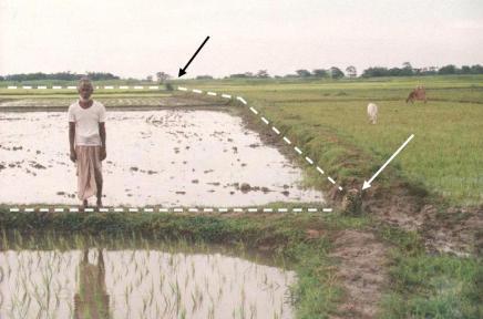 Metaenclave banglades� de Debidoba, rodeado por el enclave indio de Dahala Khagrabari (Click para ampliar)