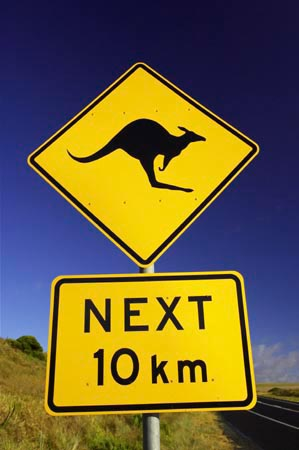 http://fronterasblog.files.wordpress.com/2008/02/kangaroo.jpg