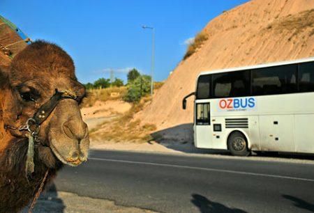 El Ozbus en Irán