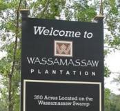 Urbanización en Wassamassaw, Carolina del Sur (click para ampliar)