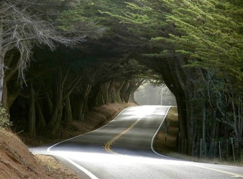 road08
