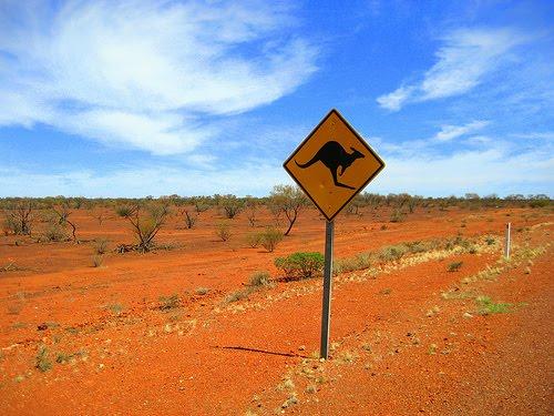 [Imagen: outback1.jpg]