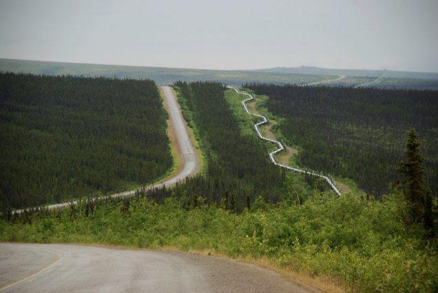 Resultado de imagen de ZONA MERIDIONAL de alaska