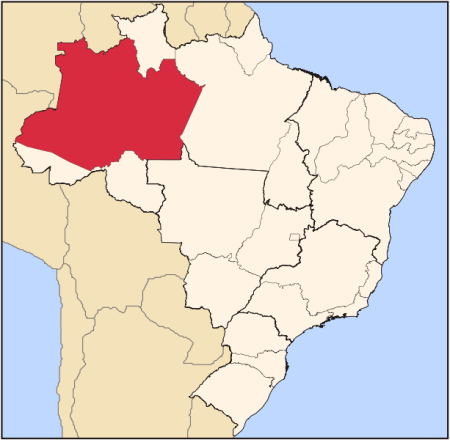 Amazonasstate