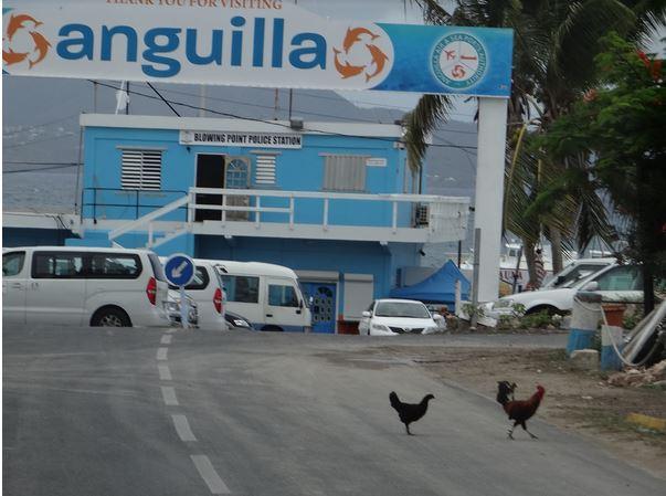 Anguilla2