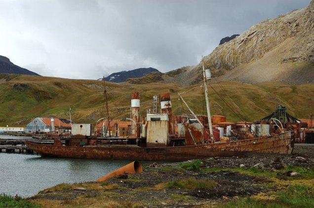 Grytviken5